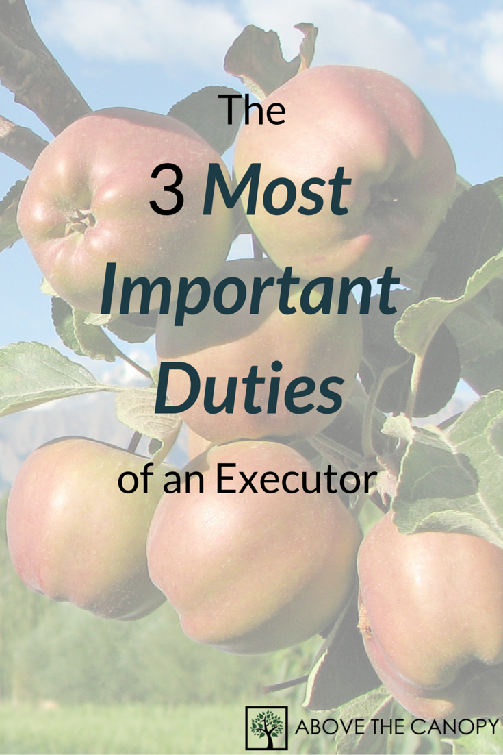 The 3 Most Important Duties of an Executor