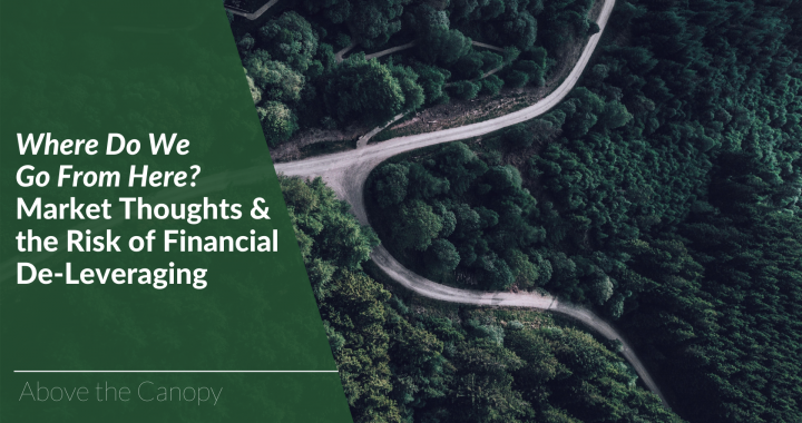 Where Do We Go From Here? Market Thoughts & Financial De-Leveraging